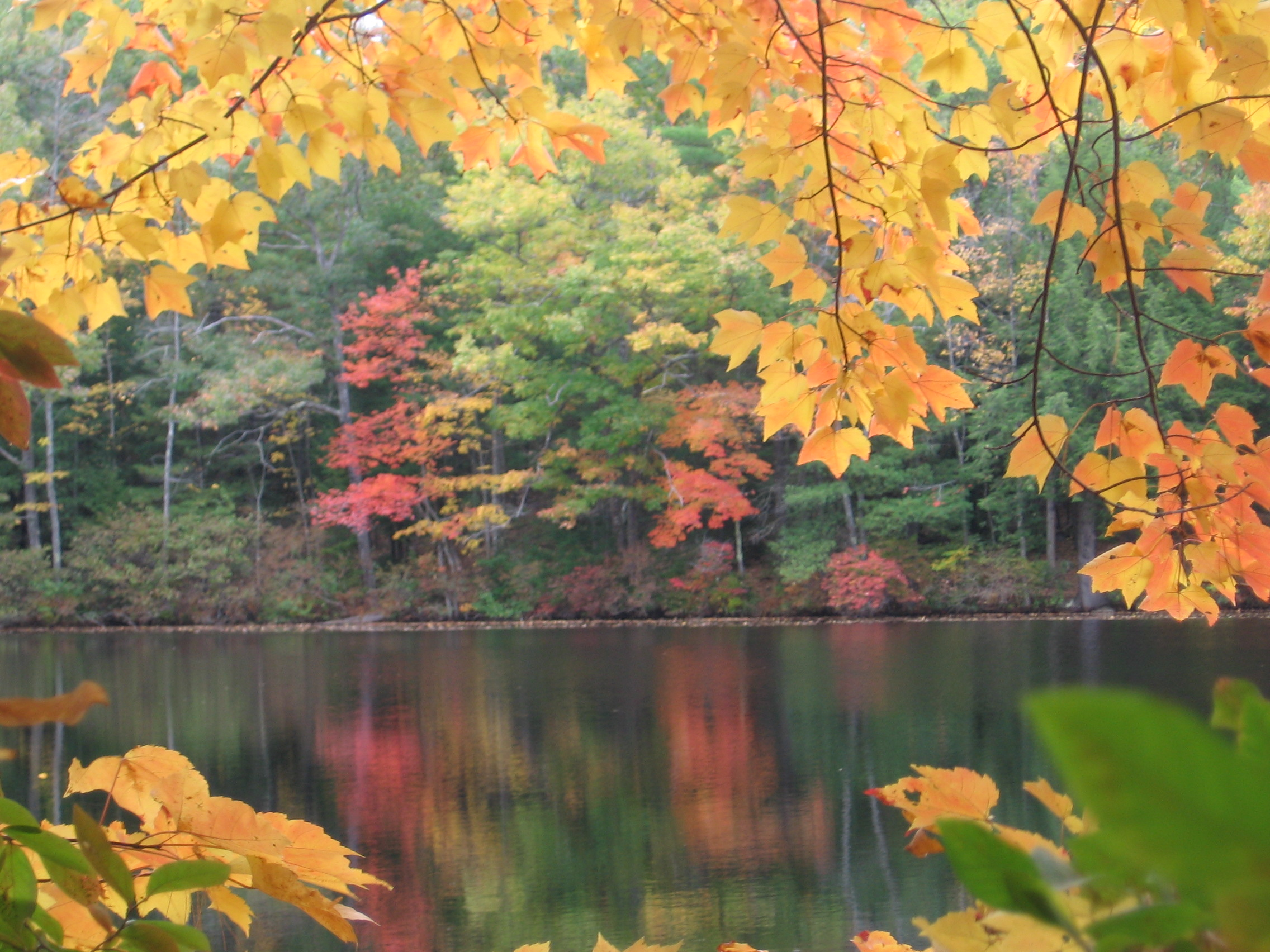 maine-river-and-home-scenes-027